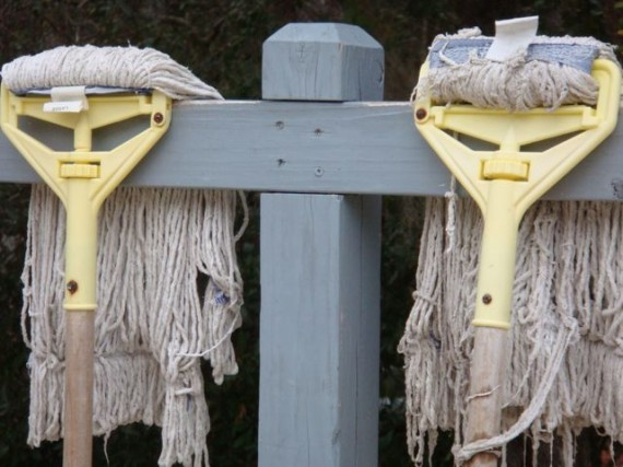 Mops or people?