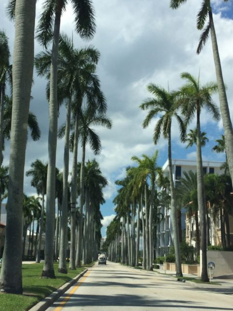 Royal Palm Way, Palm Beach, Florida
