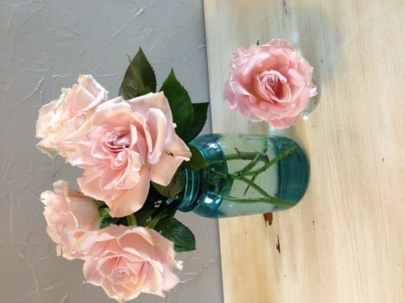 Pink Roses in water