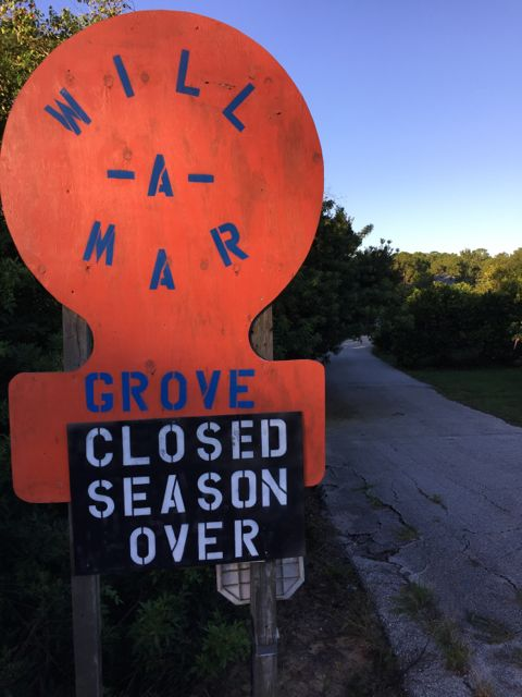 Will-A-Mar Orange Grove sign