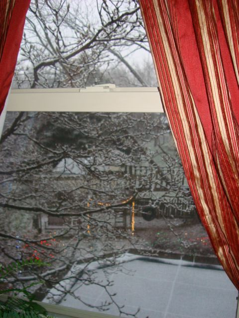 Winter view from Pennsylvania home window