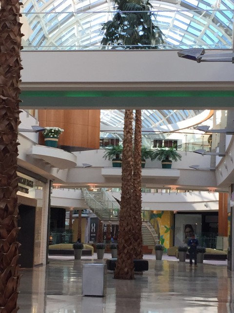 Mall at Millenia before it opens to public