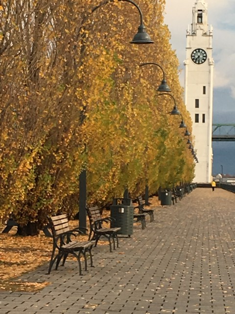 Old Harbor Montreal